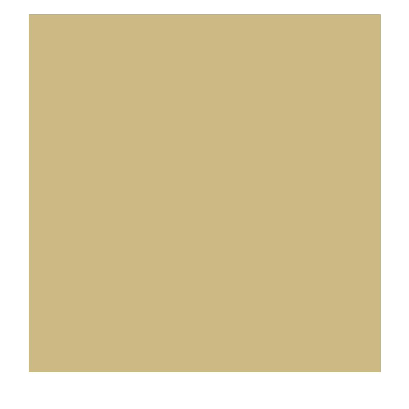 Diogo Soutelo